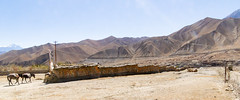 Longest mani wall from other side (Stephen T Slater) Tags: ghami mustang nepal longest maniwall mountains
