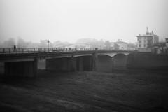 L1045704 (Daniele Pisani) Tags: lenzuola signa protesta smog traffico code file lastra nebbia fuomo fumo strada