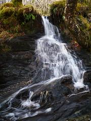 Glasdrum National Nature Reserve (Niall Corbet) Tags: scotland argyll glasdrum nationalnaturereserve nnr waterfall