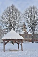 Winter in Slavonski Brod (YazzyH) Tags: slavonskibrod croatia hrvatska winter snow seasons snijeg zima tree trees