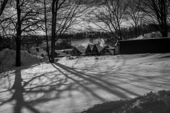 UP NORTH with the Morris's-64 (mmulliniks) Tags: sony alpha a7iii a73 sigma metabones pentax super takumar rokinon tokina 50mm 28mm 35mm 24mm 1017mm 1650mm 70300mm 85mm 24105mm zoom prime landscape portrait lifestyle nature sky 20mm 70200mm fisheye mirrorless hobby beauty fun family explore photography still life vintage snow tubing sledding downhill mountain petosky michigan skiing snowshoe snowshoeing manual kids friends sun clouds frozen fire golf course resort igloo dig bright hot chocolate woods forest architecture sunset ice
