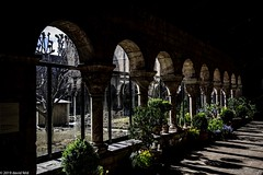 Cloisters (david feld) Tags: cloisters architecture plants arches flowers light shadows