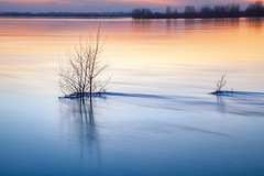 the flood (WilliamBee) Tags: dusk evening sunset river water reflection nature landscape ripple