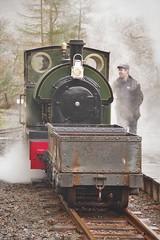 Mist and wagons (Sundornvic) Tags: steam train locomotive rail railway wales mist rain green preservation heritage