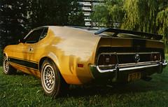 mach005 (72grande) Tags: ford mustang machi t5 1973 tstt21 mediumyellowgold 6c mediumginger ronal