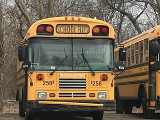Adelwerth Bus Corp. 256 - 2002 Blue Bird TC2000