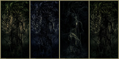Polyptych II : Transfigured Night (theReedHead) Tags: thereedhead milwaukeephotographers wisconsinphotographers sonya7 sony2470mmf4 sonyzoomlens sonycameras sonymirrorlesscameras sonyemount mutedcolor subduedcolor 2tone 2toned twotone twotoned duotone duotoned polyptych anthropomorph anthropomorphic anthropomorphism pareidolia woodlandscenes atmospheric dreamlike dreamy fantastic fantastical ghostly mysterious otherworldly supernatural schlitzaudubonnaturecenter sanc surreal surrealism surrealistic