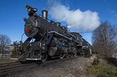 Arriving in Ringoes (Joey Damico) Tags: black river western ringoes nj new jersey steam train alco 280 history railroad sky coal winter christmas holliday transportation locomotive wheel grass tree smoke hunterdon county