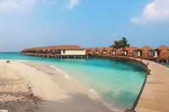 Baa Atoll - Maldivas (TLMELO) Tags: ilhasmaldivas maldivesislands maldives maldivas atoll baa sea ocean water mar oceano água areia sand peolple pessoas green dharavandhoo praia beach