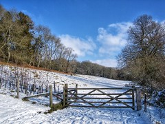 Memories of a Walk in the Snow. (margaretgeatches) Tags: fence gate blue sky clouds snow trees woodland field somerset winter