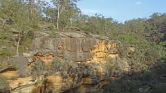 Around Mermaids Pool_1 (Tony Markham) Tags: tahmoorgorge cliffs sandstone cave overhang mermaidspool bargoriver