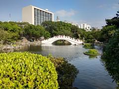 2019-01-24 15.10.21 (albyantoniazzi) Tags: taipei 台北市 taiwan 中華民國 asia roc china island travel city