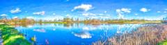 Digital Watercolor Wetlands Panorama - HSS (randyherring) Tags: ca california centralcaliforniavalley cosumnesriverpreserve elkgrove afternoon aquaticbird clouds outdoor park sky waterfowl wetland