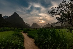 Phu Thap (Rod Waddington) Tags: asia vietnam north phu thap village incense makers karst mountains ba be rice fields sunrise landscape path farming farm rural