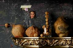 A Grouping of Nuts (Studio d'Xavier) Tags: werehere nutsandthetreestheyfallfrom nuts walnuts coconuts angelinajolie stilllife strobist