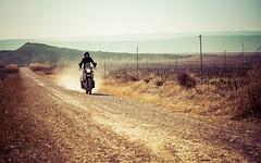 Camino polvoriento (David Andrade 77) Tags: bardenasreales navarra españa spain desierto royalenfield himalayan