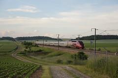 Thalys PBKA 4331 (Thomas-60) Tags: tgv thalyspbka train ferroviaire lgv nord