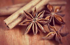 Cinnamon & Star Anise (Through Serena's Lens) Tags: smileonsaturday shadesofbrown spices cinnamon staranise dof tabletop stilllife canoneos6dmarkii macro