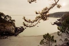 La plage (leniners) Tags: 2018 france saint hernot sainthernot presquile crozon presquiledecrozon bretagne brittany beach plage finistere silbersalz35 leica m6 leicam6
