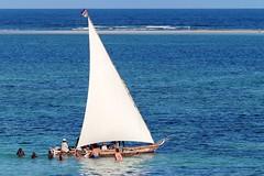 Sailing along Diani Beach (BaobabBeachResort) Tags: beach beachlife mombasa ukunda diani dianibeach safari sea ocean holiday hotel photography kenya nairobi swimming sailing