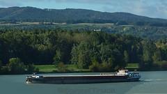 Karin auf der Donau bei Krems (A) (BonsaiTruck) Tags: motoschiff güterschiff karin donau krems schiff schiffe ship boat