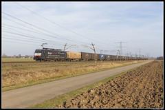 SBB Cargo 189 290, Angeren (J. Bakker) Tags: sbbc sbb cargo br189 189 290 40118 bologna shuttle angeren nederland