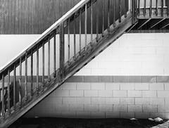 stairs (sephrocker) Tags: stairs blackandwhite bw lines monochromatic