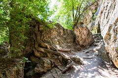 Caves at Rifle Falls, Colorado (BeerAndLoathing) Tags: 2018 usa roadtrip riflefalls 77d pallisadetrip august trip caves canon summer canoneos77d colorado