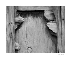 The Opera (agianelo) Tags: wood fence worn decay urban monochrome bw bn blackandwite