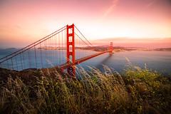 Golden Gate and Light (kephart_kyle) Tags: 2016 beautiful bridge california city dark fransisco gate golden lights road san sunset trip