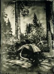 Camping (Blurmageddon) Tags: 5x7 largeformat wetplatecollodion alternativeprocess alumitype tintype newguycollodion camping outdoor nature landscape epsonv700