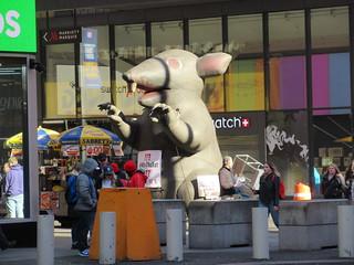 2019 Giant Strike Rat Balloon Corner of 45th St NYC 3833