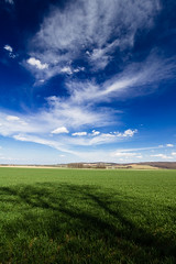 20180414-Canon EOS 750D-7829 (Bartek Rozanski) Tags: niemcza dolnoslaskie poland spring polska lowersilesia silesia field agriculture landscape