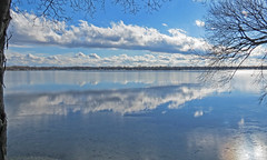 BLUE MORN (ddt_uul) Tags: blue sky clouds tree ice winter sunrise relection branch water lake whitmore whitmorelake