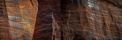 Zion National Park (Springdale, Utah) (@CarShowShooter) Tags: geo:lat=3721208100 geo:lon=11295681200 geotagged springdale unitedstates usa utah watchmanresidentialarea 18200 18200mm a6500 americannationalpark attraction beautiful canyon clouds destination gorgeous hiking ironcounty kanecounty kolobcanyon landscape mountain narrows nationalpark nationalparkinutah nationalparkservice natural nature navajosandstone nps riversidewalk rock scenery scenic serene sightseeing sky sony sonya6500 sonyalpha6500 sonye18200mmf3563oss sonymirrorless sonyα6500 southwesternutah springdaleutah stone terrain touristattraction touristdesert travel travelblogphoto travelphotography usnationalpark vacation virginriver washingtoncounty wilderness winter zion zionnationalpark