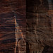 Zion National Park (Springdale, Utah)