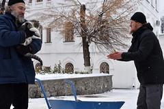 24_Photos taken by Andrey Andriyenko. January 2019