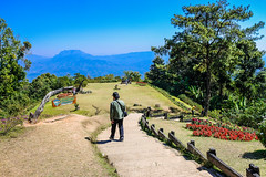 Viewpoint at Huay Nam Dang national park  , Chiangmai, Thailand (www.icon0.com) Tags: forest sunrise huai traveler pattern tourism holiday huenamdang summer beautiful mountain view mai top grass design thailand dang national season nam nobody sunny day park sky viewpoint flowers green natural wallpaper nature tree outdoor hill sunlight blue huay background travel landscape