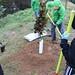 Ayrsley_Tree_Planting_2019_ (30)