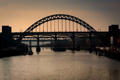 Bridges on the Tyne, Newcastle upon Tyne, UK (KSAG Photography) Tags: bridge river tyne newcastle gateshead tyneandwear silhouette nikon february 2019 england europe britain unitedkingdom uk city urban landscape