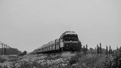 ТЭП70-0333 (Pavel888) Tags: тепловоз локомотив пассажирский россия ржд деревня 582км russia rzd acros fujifilm fujinon xc50230mm xt2 tep70 tep700333 333 тэп70 ювжд тэп700333