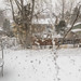 March 2019 Colorado Blizzard-3063