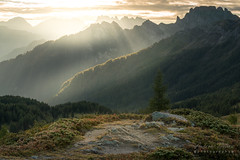A9905374_s (AndiP66) Tags: vallespass passovalles falcade martinodicastrozza paledisanmartino sonnenaufgang sunrise dolomiten dolomites dolomiti mountains berge alps alpen aussicht view südtirol alto adige southtyrol trentino veneto autumn september workshop photoworkshop fotoworkshop alessandrogruzza northernitaly italy italien norditalien sony alpha sonyalpha 99markii 99ii 99m2 a99ii ilca99m2 slta99ii tamron tamronspaf70300mmf456diusd tamron70300mm 70300mm f456 amount andreaspeters