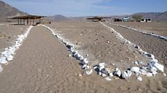 In the Nazcas necropolis (Chemose) Tags: nécropole necropolis paysage landscape nazca precolumbian précolombien hdr pérou peru avril april sony ilce7m2 alpha7ii