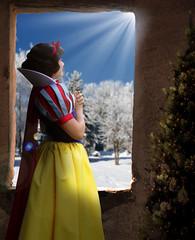 "Can't Have Christmas Without A Little ""Snow"" (Disney Digitally) Tags: christmas merry snowwhite sevendwarfs disneyland anaheim california orangecounty sunlight tree digitalimaging photoshop canon"