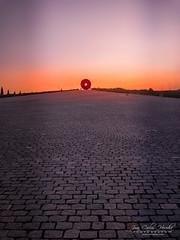 Staring at Sunset (jchmfoto.com) Tags: pinksky landscape sky madrid spain europe sunset park anochecer cielo cielorosa cielorosado crepúsculo dusk españa europa evening landscapes nightfall noche ocaso paisaje paisajes parque puestadesol puestadelsol sundown twilight es