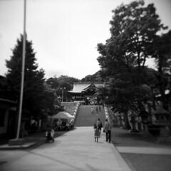 shrine 03 (mathias-erhart) Tags: japan 日本 takamatsu 高松市 shrine 神社 shinto religion tree trees path stairs person people blackwhite monochrome film ilfordhp5plus holga