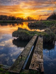 Slippery Sunset (iPhone Fotograaf) Tags: landscape sunset nature reed evening clouds light water sky iphone8plus winter reflection groningen sun