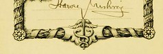 anesthesia image