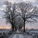Wintermorgen - wintermorning